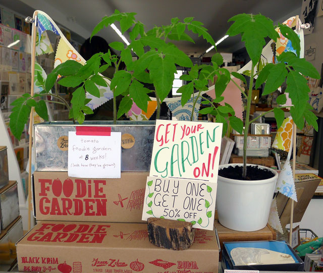 Get Your Garden On – Foodie Garden Kits on Sale!