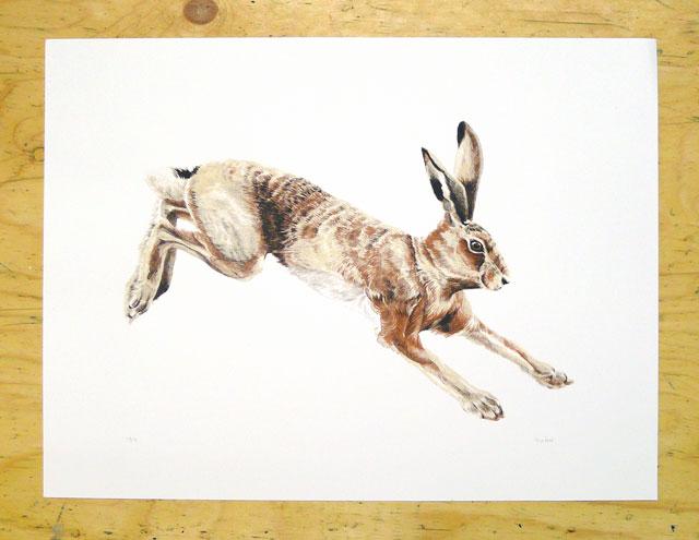 Melinda Josie Running Hare