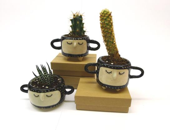 hinklevilleplanter1