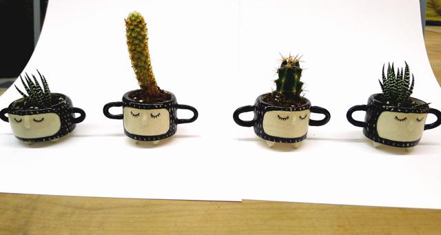 hinklevilleplanter2