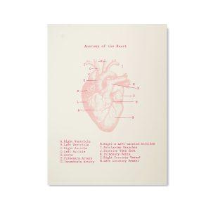 Posters & Artprints